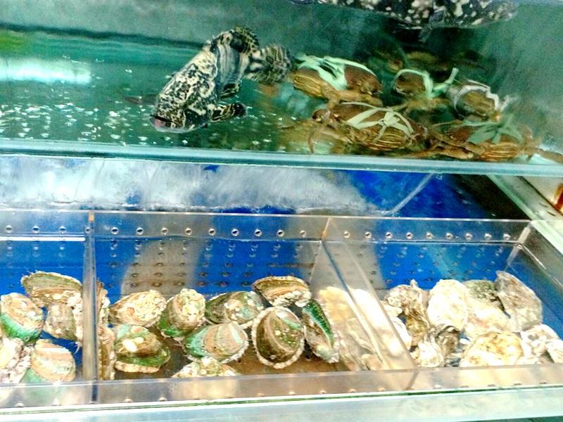 台中現撈海鮮限時優惠點活海鮮就送香酥鴨